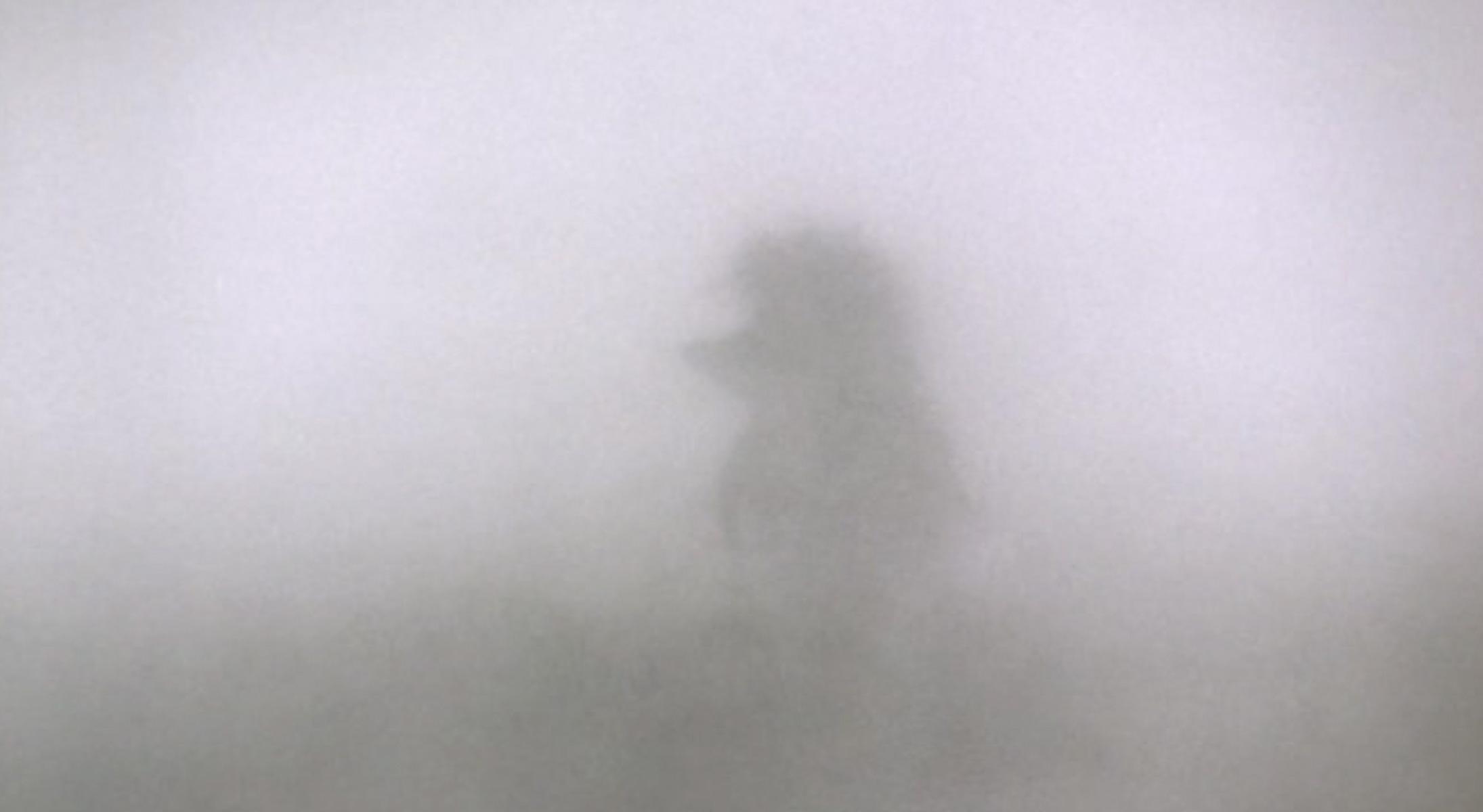 метафора человека в тумане