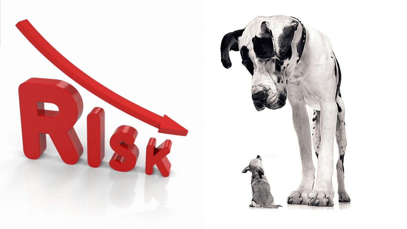 метафора рисков