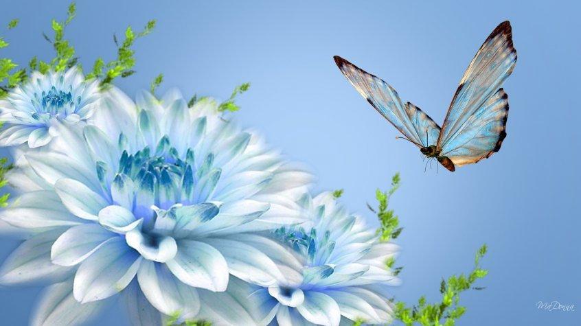фрирайтинг похож на бабочку